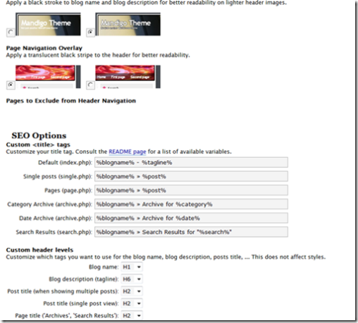Mandigo WordPress Themes  Options Screenshot 3